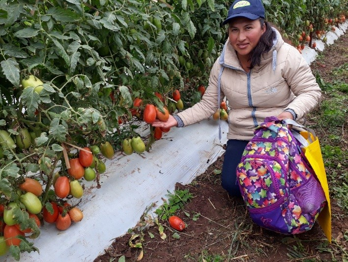 Your Support is Bearing Fruit in Bolivia
